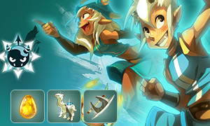 Dofus Items